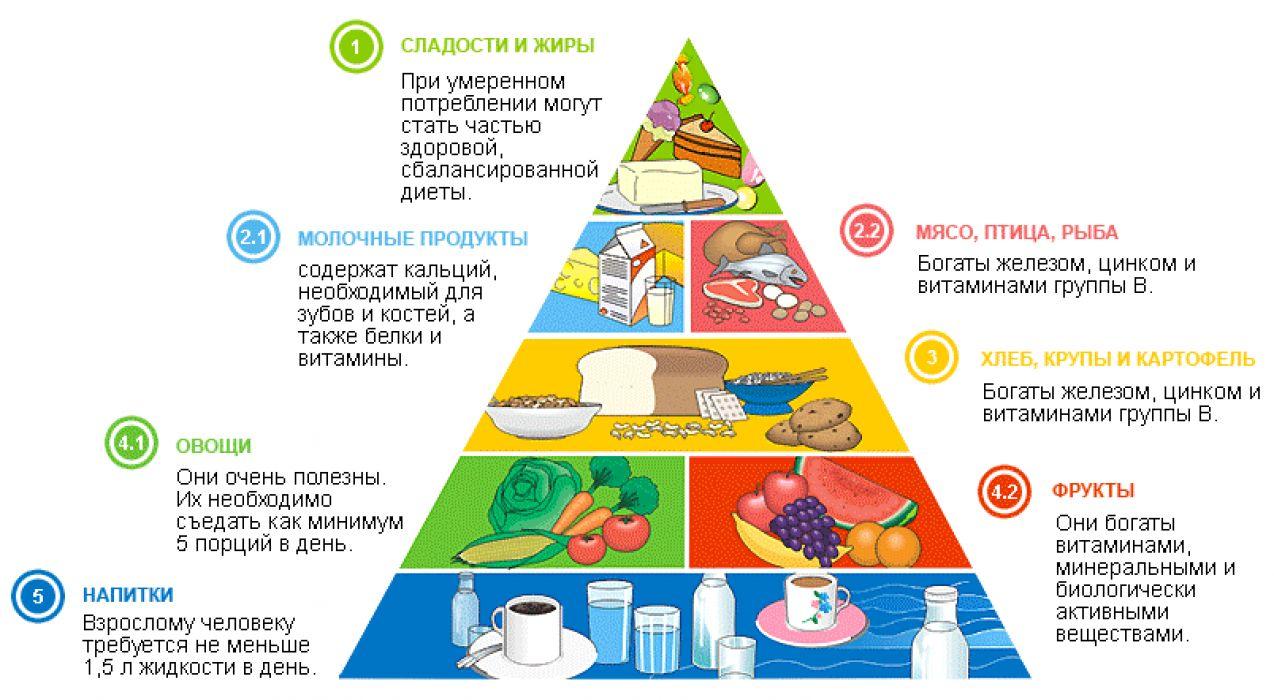 Здоровый образ жизни и его составляющие Культура питания  здоровое питание