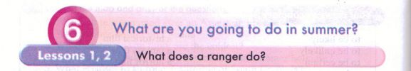 What does a ranger do?