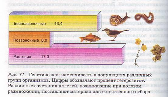 Доклад на тему изменчивость организмов 7162