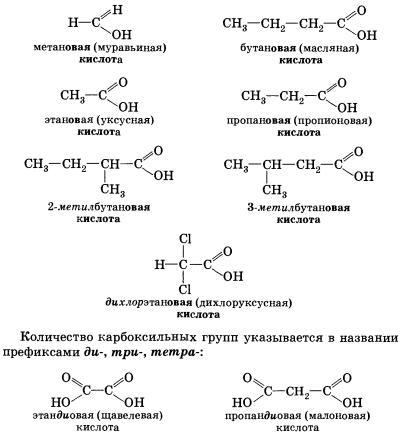 Карбоновые кислоты доклад по химии 1421