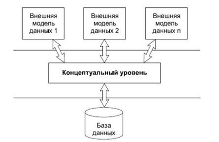 Реферат по информатике на тему база данных 8211