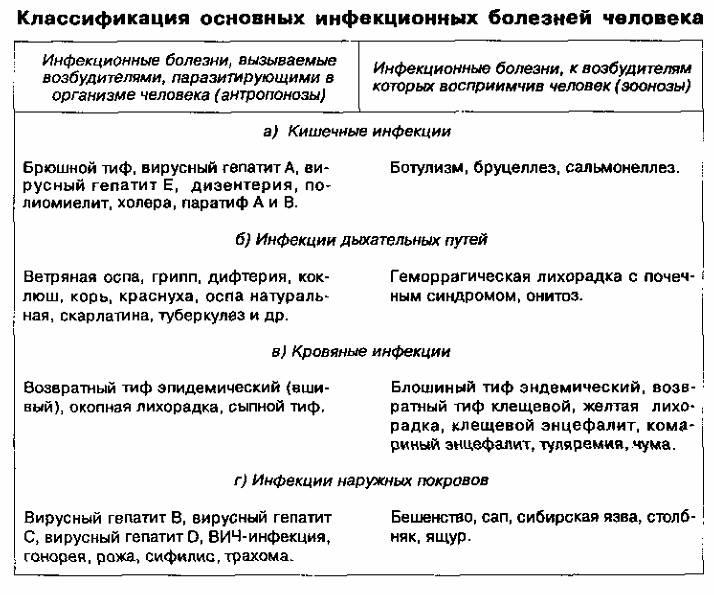 Доклад по обж на тему инфекционные заболевания 11