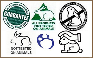 an argument against testing products on animals