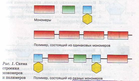 схема строения мономеров и полимеров