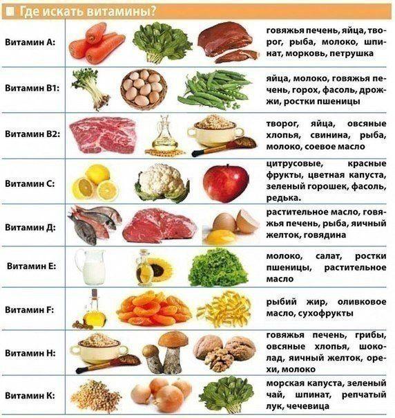 Правильное питание кратко реферат 5626